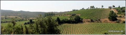 Sardegna nature