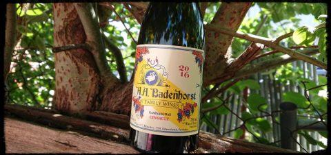 Badenhorst Cinsault