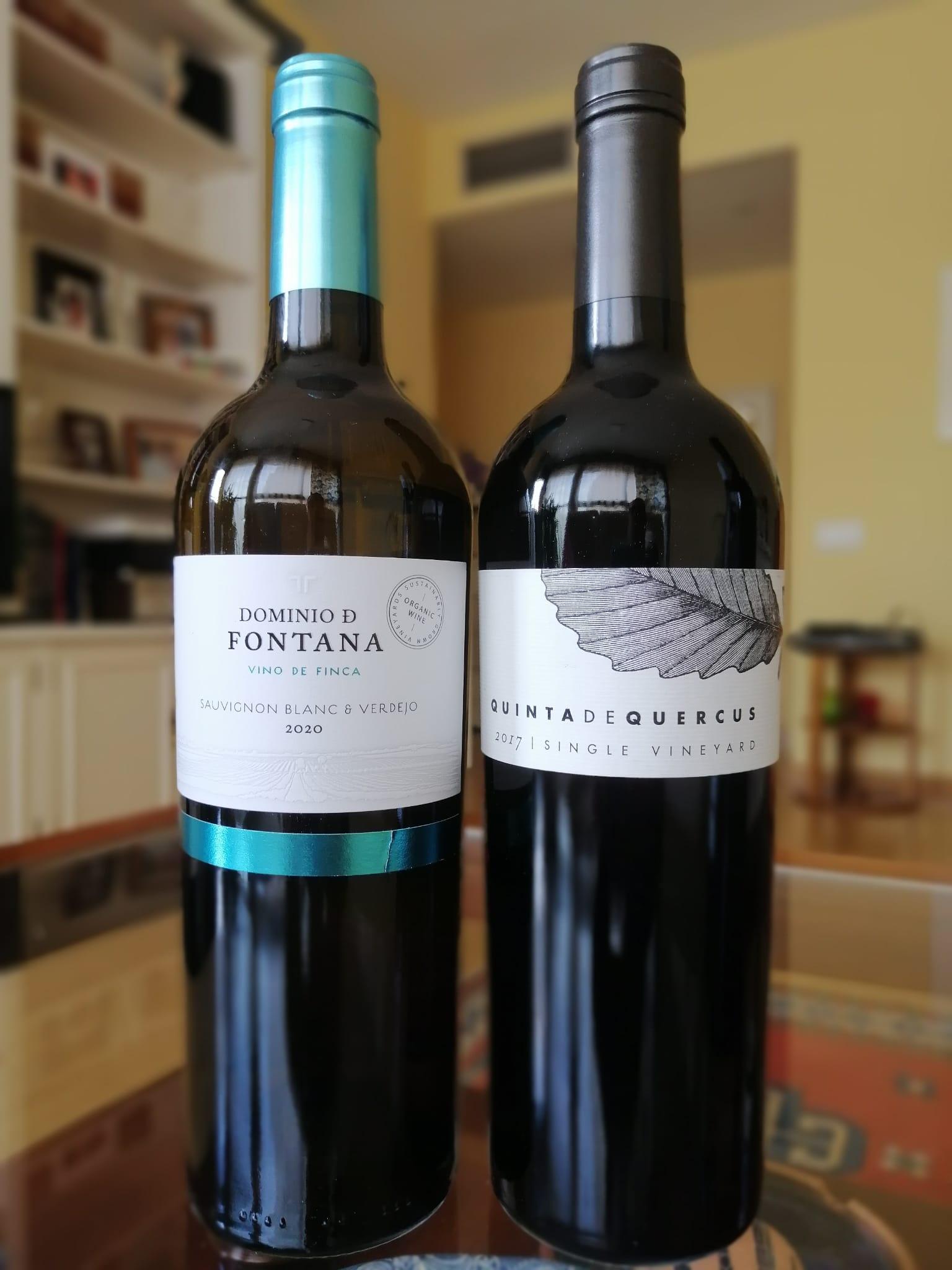 Bodegas Fontana_Vinoexpresión
