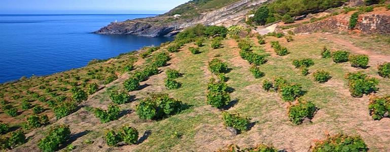 unesco-pantelleria
