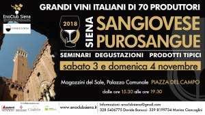 Sangiovese Purosangue a Siena