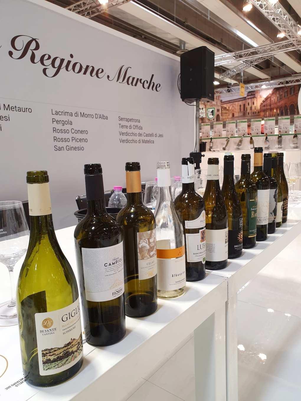 Le bottiglie di Bianchello per le degustazioni del Vinitaly 2019