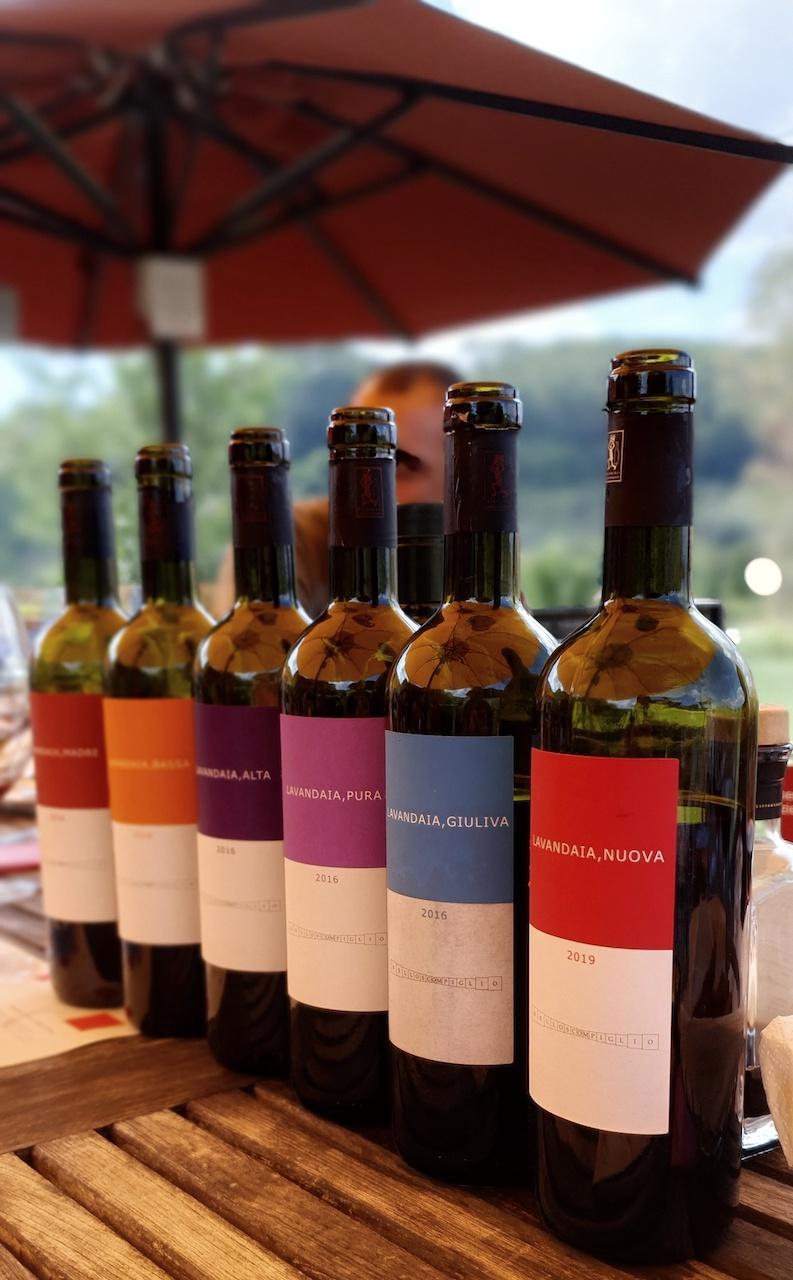 Gamma vini di Tenuta dello Scompiglio