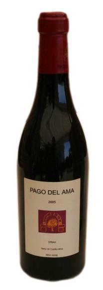 BSVA-PAGO-DEL-AMA