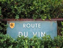 Visite route des vins