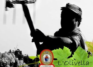 L'Olivella
