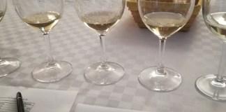 Vini Frascati su Cucina e Vini