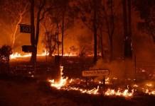 australian wildfires
