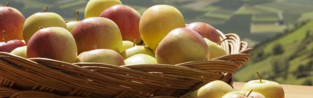 Slikovni rezultat za Äpfel