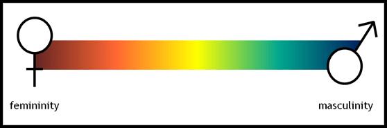 Gender Spectrum Panel