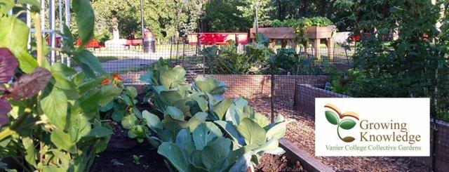 The Vanier Collective Gardens