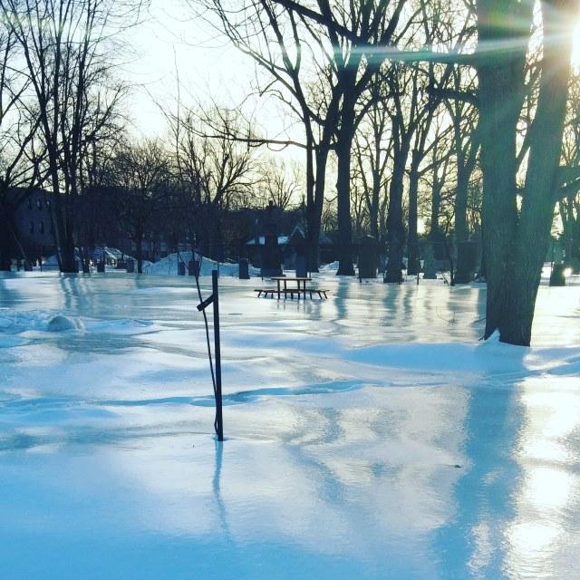 Winter Rink
