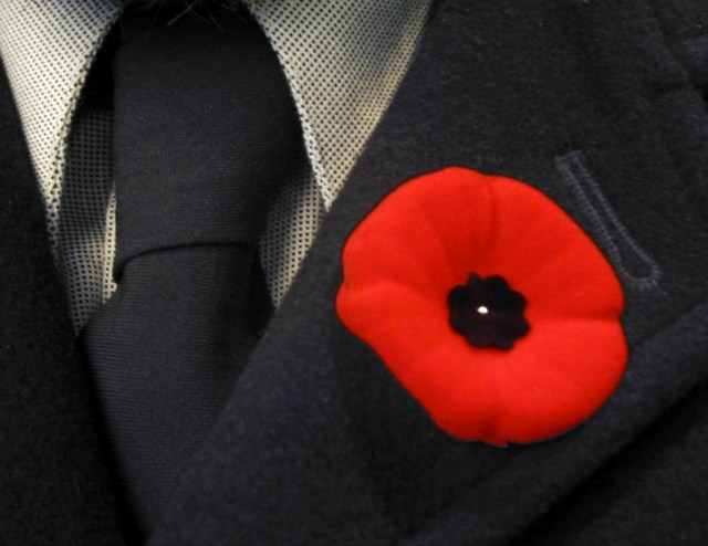 The Importance of Wearing a Poppy During the Month of November