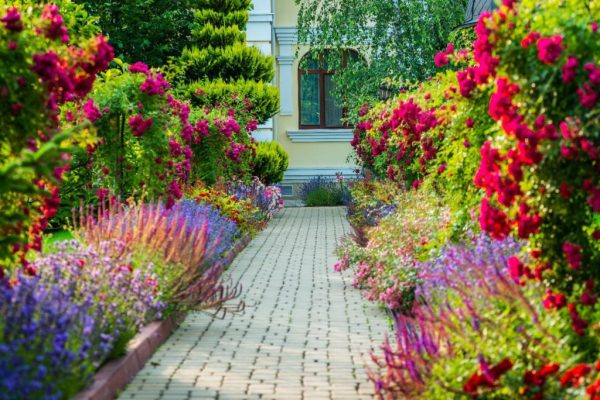 landscape design tips maryland