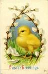 Little Chick Vintage Easter Postcard
