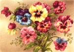 Vintage Postcard of Spring Flowers