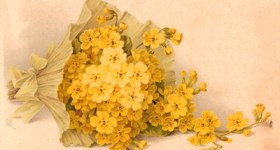 Vintage Postcard of a Spray of Yellow Flowers