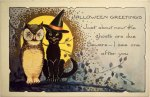 Cat and Owl in Moonlight Vintage Halloween Postcard