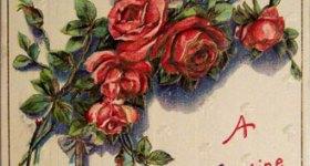 Vintage Roses Valentine's Day Postcard