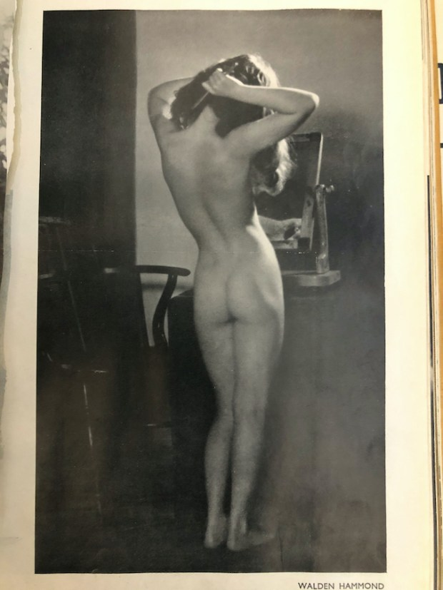 Vintage Nude By Walden Hammond