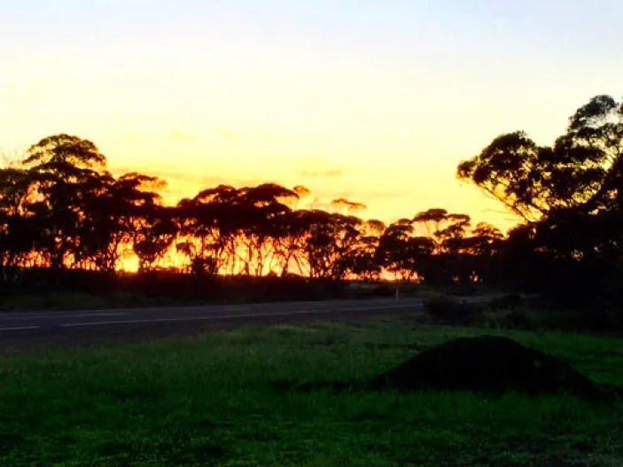 Beautiful Sunrise at Kimba