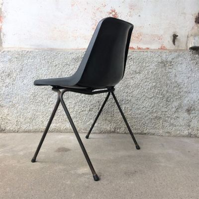 Chaise coque Robin Day