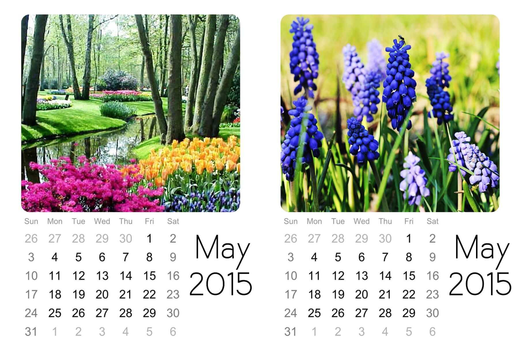 may mini calendar