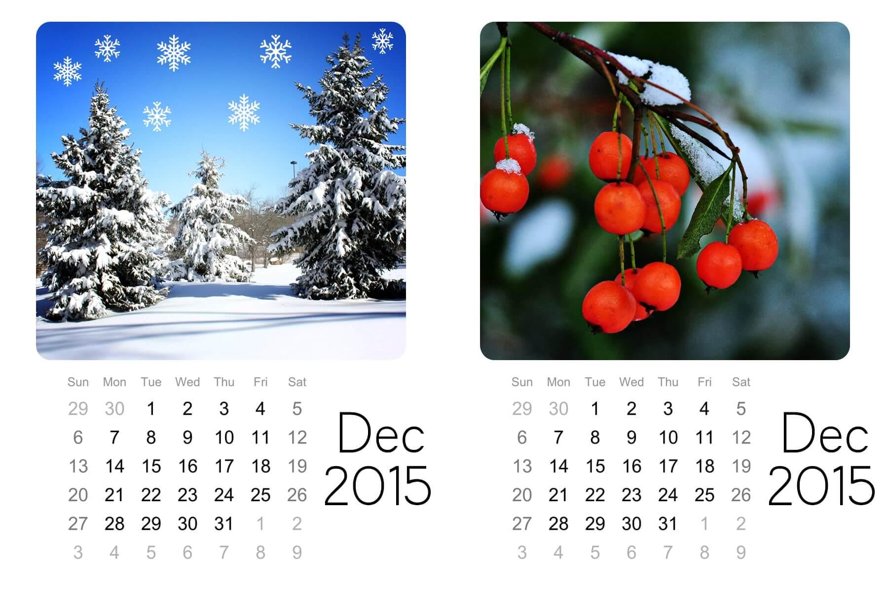 Dec mini calendar