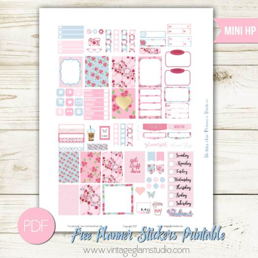 Mini Happy Planner - Shabby Chic Planner Stickers - Vintage