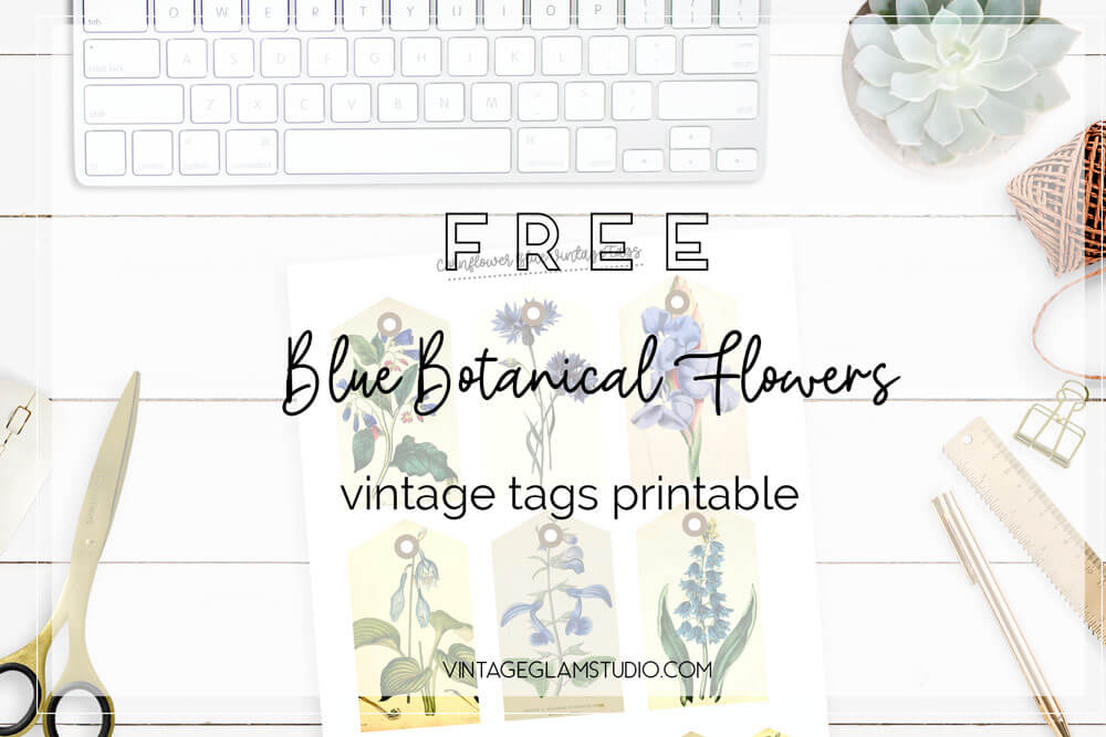 blue vintage botanical flower tags