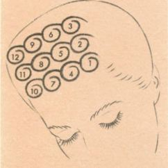 Pin Curl Diagram How To Draw Swimlane In Visio Of Vintage Curls Set Hair 1920s 1930s 1940s 1950s 1960s
