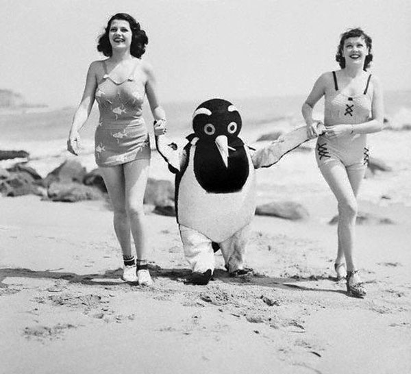 1930s vintage swimsuits image