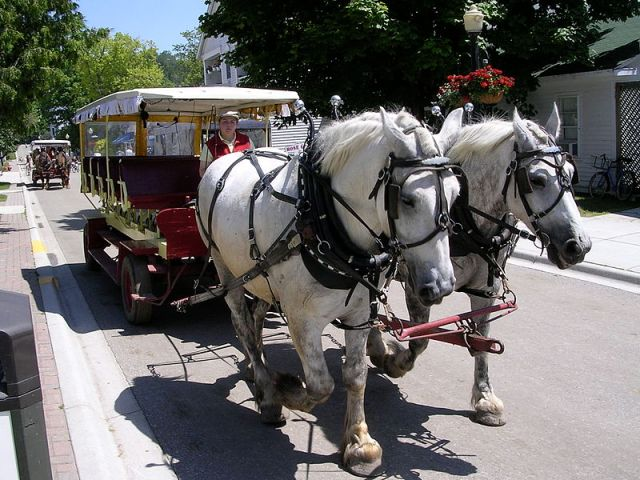 Grand Hotel Mackinac Island carriage