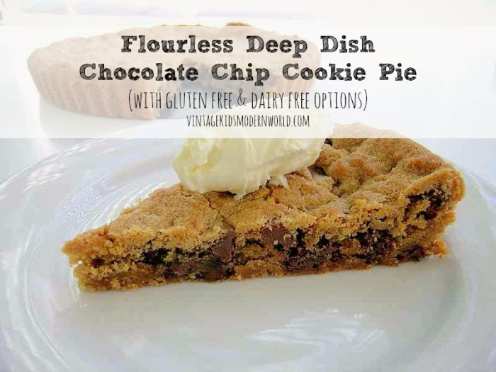 Flourless Deep Dish Chocolate Chip Cookie Pie (GF and DF options) :: Vintage Kids | Modern World
