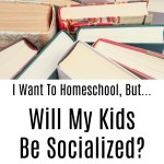 I Want To Homeschool, But…Will My Kids Be Socialized?