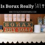Is Borax Really Safe?