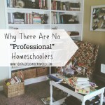 "Why There Are No ""Professional"" Homeschoolers"