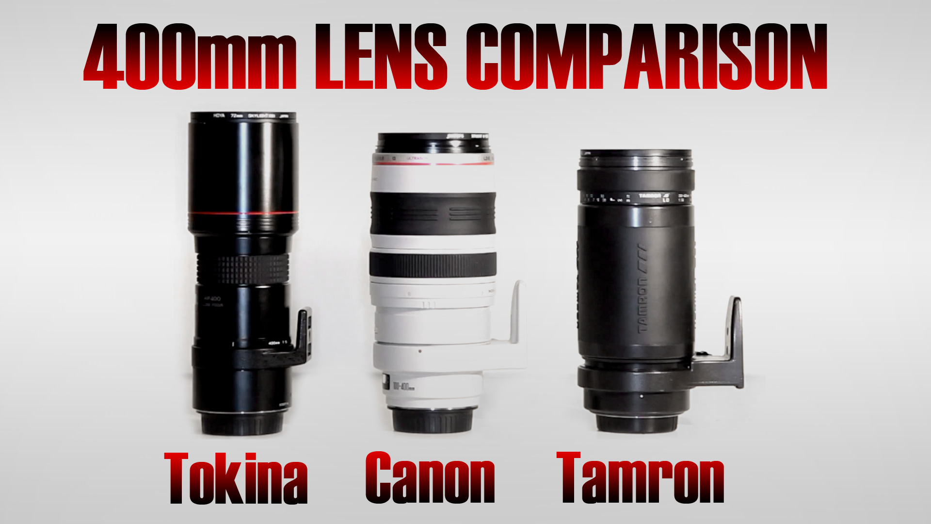 400mm Comparison | Part 1 | Canon 100-400mm L Alternatives
