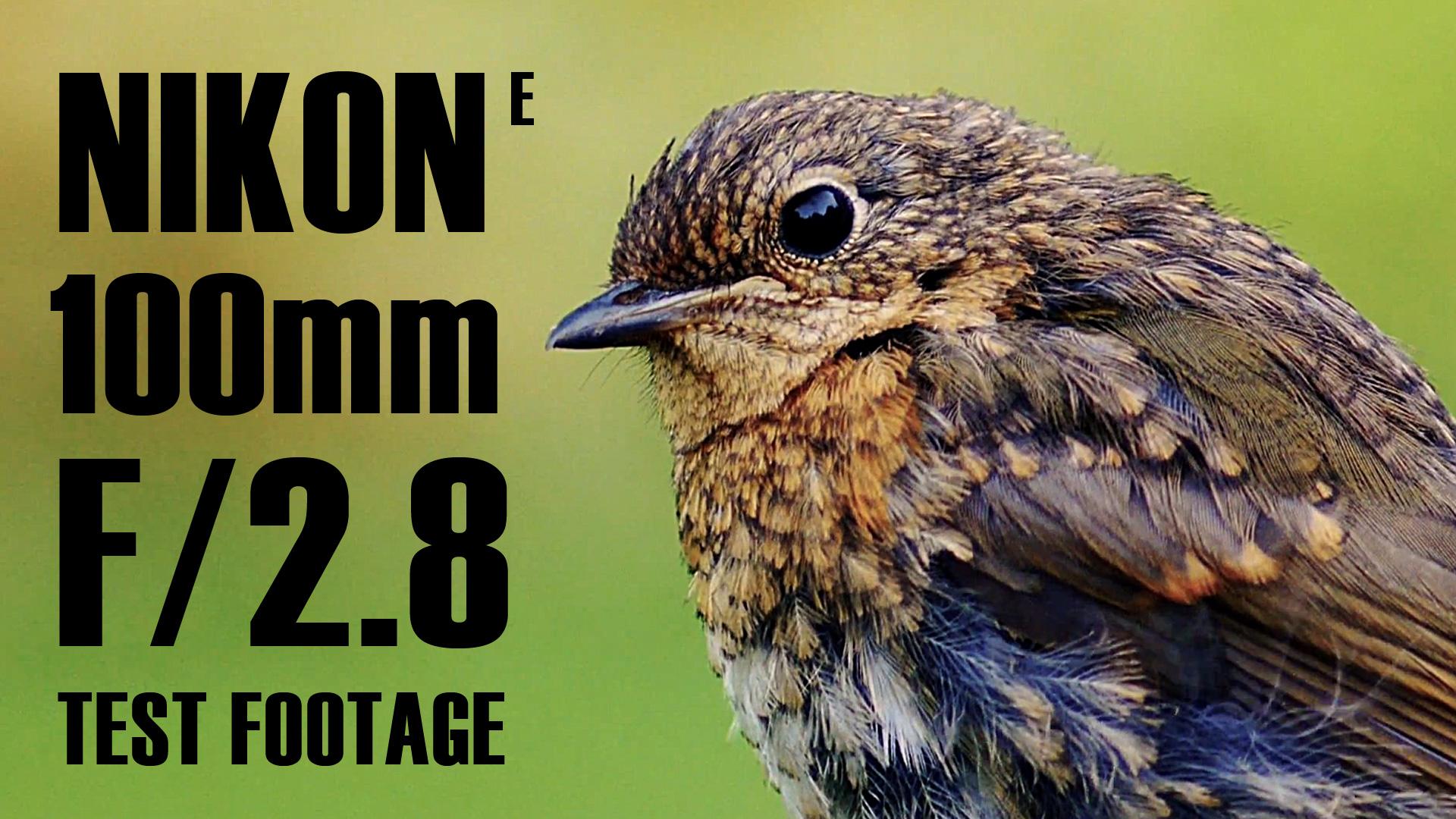 Nikon Nikkor 100mm f/2.8 AF-S Series E TEST FOOTAGE