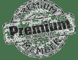 Vintagepornbay Premium