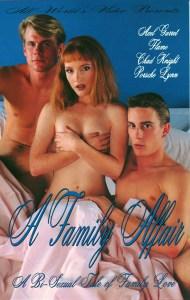 A StepFamily Affair (1991)