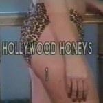 Hollywood Honeys 1 (1982)