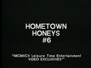 Hometown Honeys 6 (1995) [HQ] [Download]