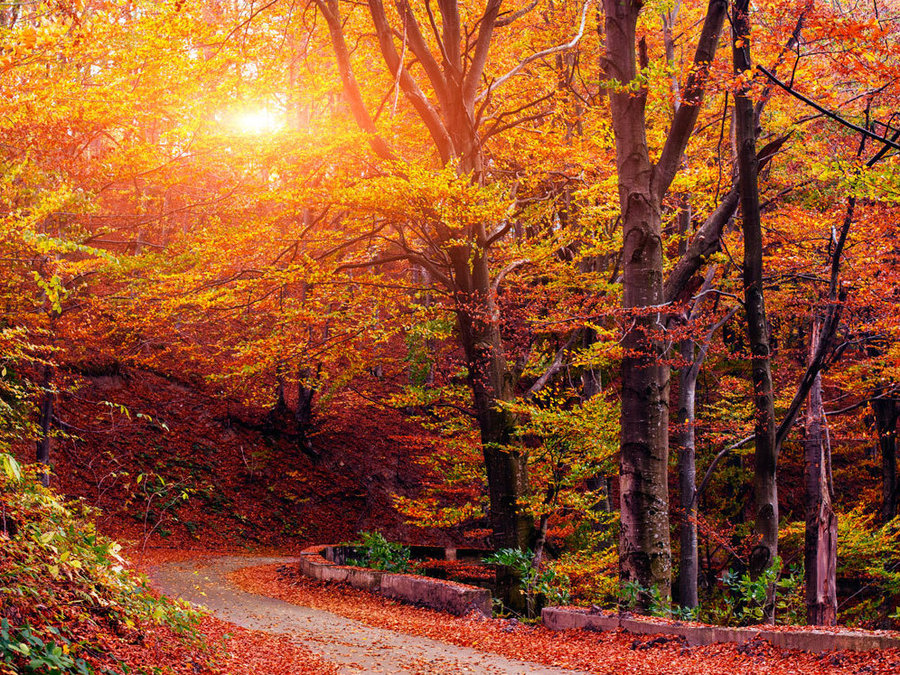 Upstate New York Fall Hd Wallpaper Tina Girlpickers Com Archives Vintage Unscripted
