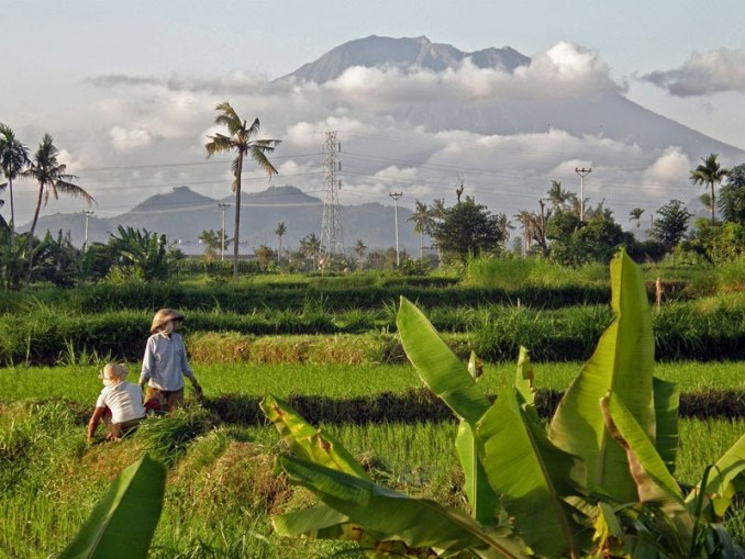 Postcard Bali