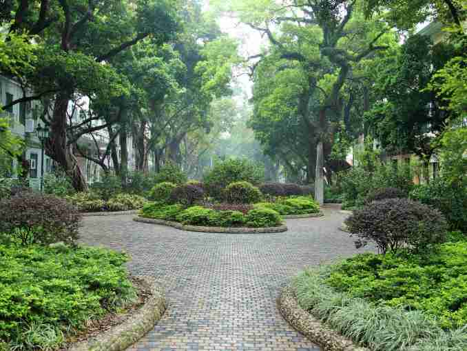 The leafy oasis of Shamian