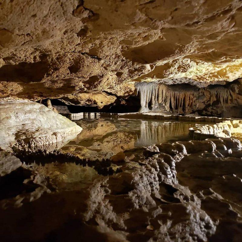 Florida Caverns State Park, Marianna, Florida