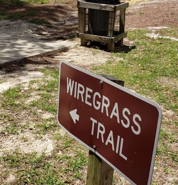 Wiregrass Trail at Falling Waters State Park, Chipley, Florida