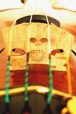 Good violin bridge