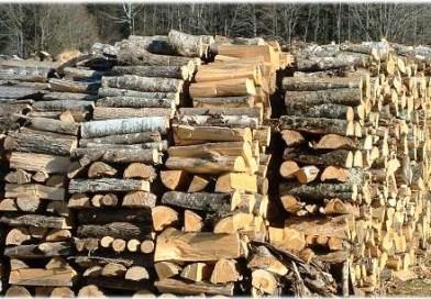 Мъж превозвал незаконно добита строителна дървесина е установен вчера от велинградски полицаи
